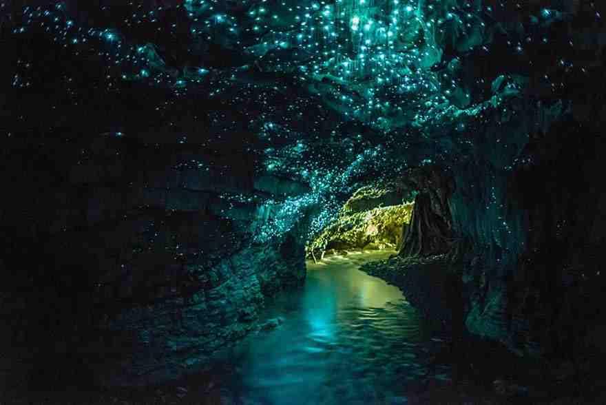 Glowworms Cave, New Zealand